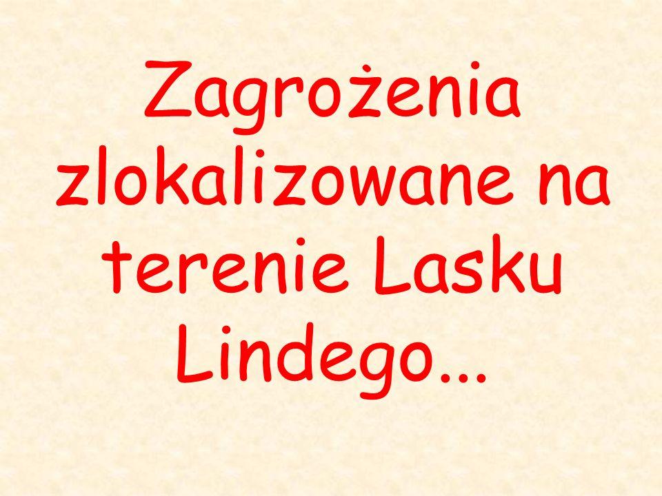 Zagrożenia zlokalizowane na terenie Lasku Lindego...