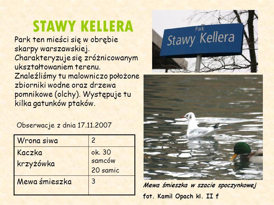 STAWY KELLERA