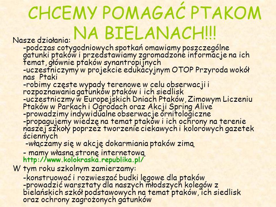 CHCEMY POMAGAĆ PTAKOM NA BIELANACH!!!