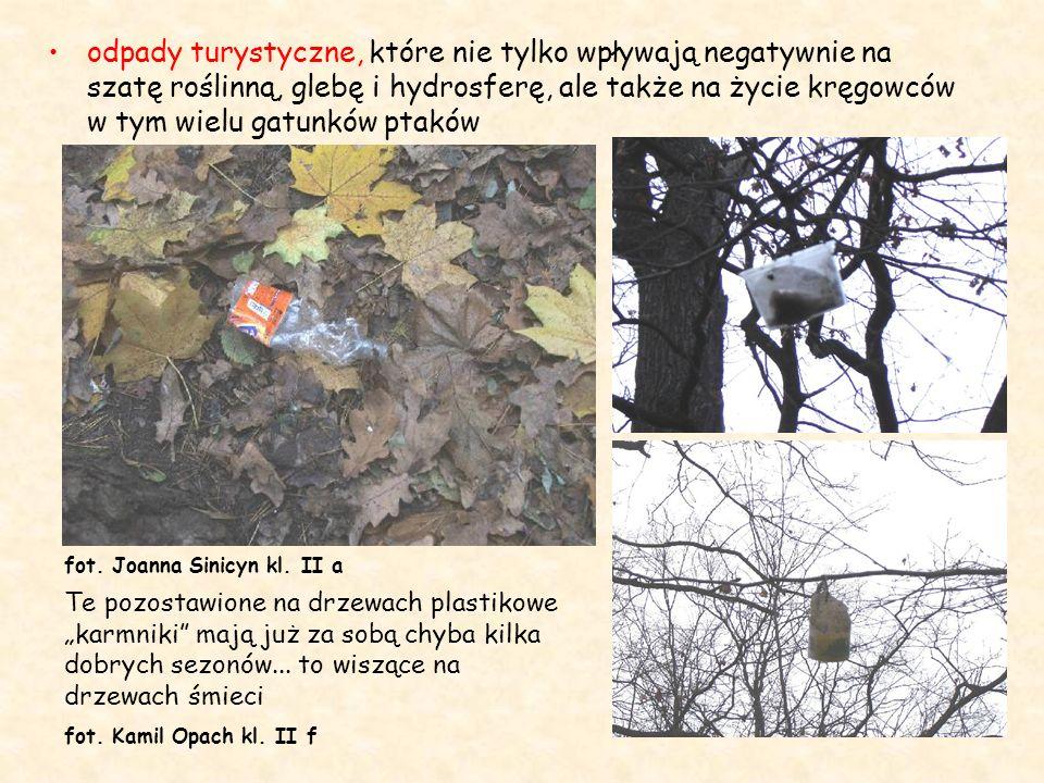 odpady turystyczne, które nie tylko wpływają negatywnie na szatę roślinną, glebę i hydrosferę, ale także na życie kręgowców w tym wielu gatunków ptaków