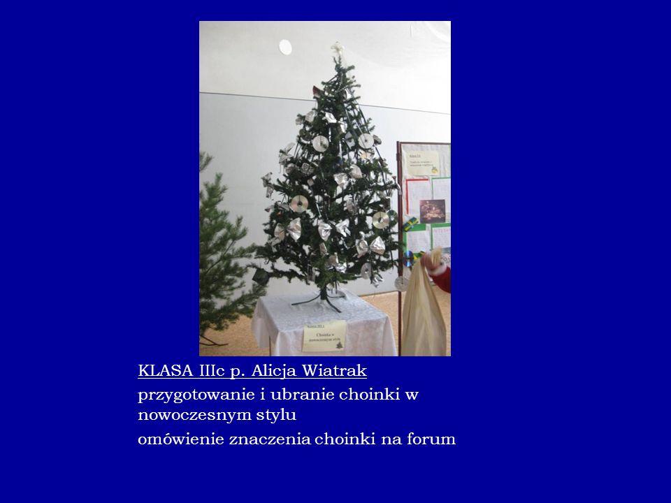 KLASA IIIc p. Alicja Wiatrak