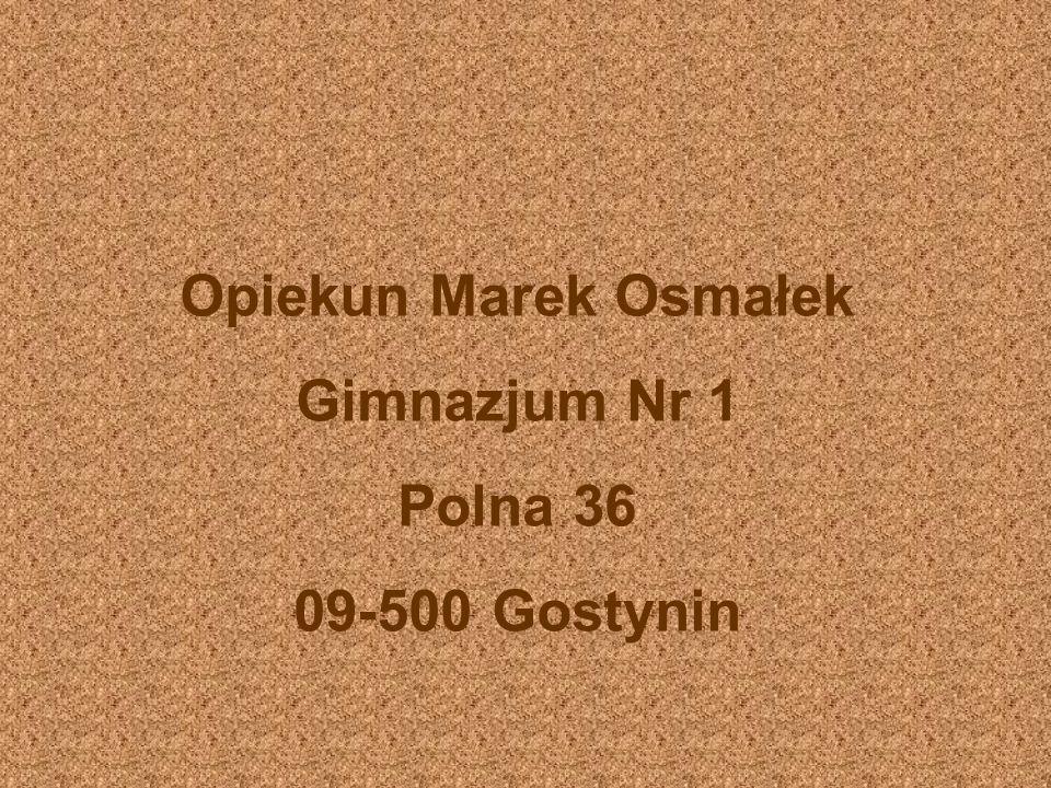 Opiekun Marek Osmałek Gimnazjum Nr 1 Polna 36 09-500 Gostynin