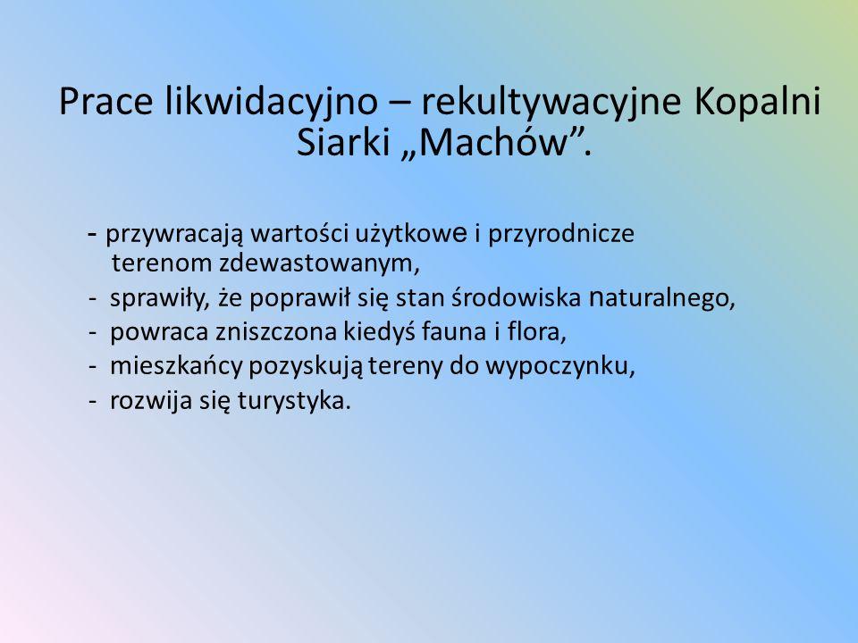 """Prace likwidacyjno – rekultywacyjne Kopalni Siarki """"Machów ."""