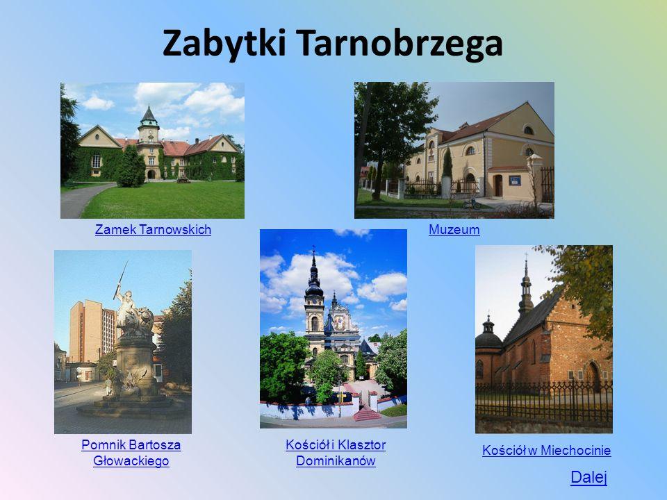 Zabytki Tarnobrzega Dalej Zamek Tarnowskich Muzeum