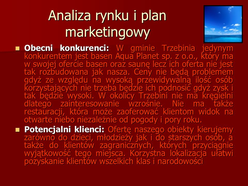 Analiza rynku i plan marketingowy