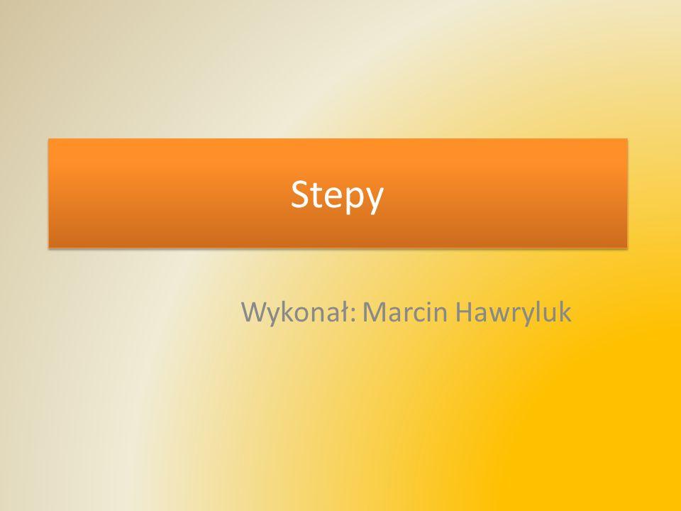 Wykonał: Marcin Hawryluk
