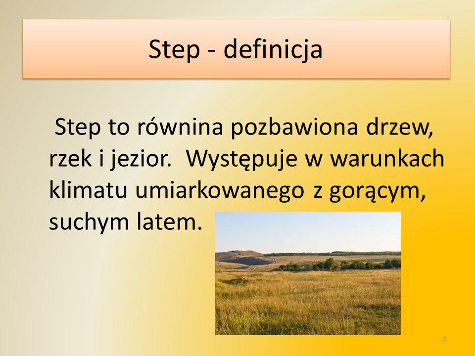 Step - definicjaStep to równina pozbawiona drzew, rzek i jezior.