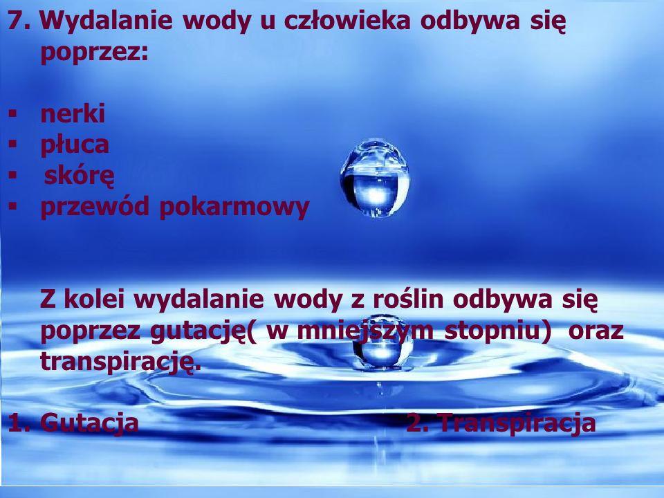7. Wydalanie wody u człowieka odbywa się poprzez: