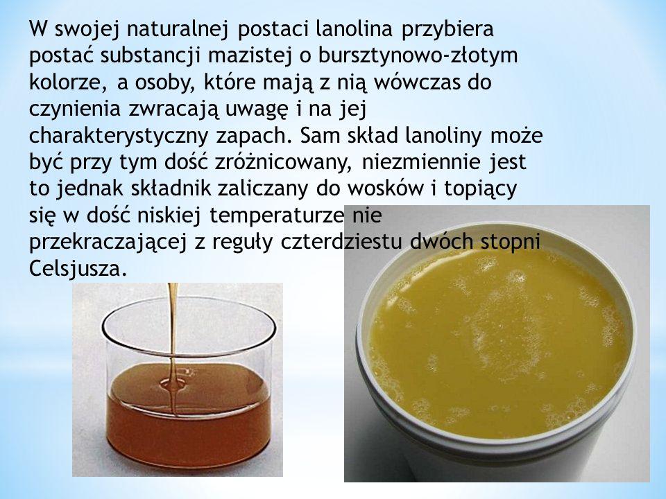 W swojej naturalnej postaci lanolina przybiera postać substancji mazistej o bursztynowo-złotym kolorze, a osoby, które mają z nią wówczas do czynienia zwracają uwagę i na jej charakterystyczny zapach.