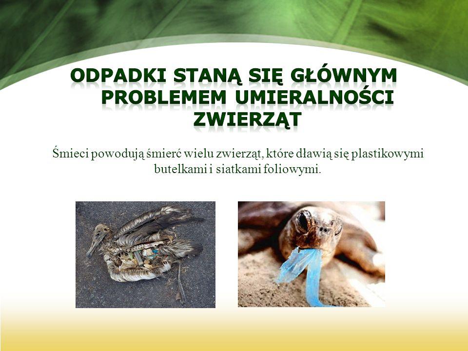 Odpadki staną się głównym problemem umieralności zwierząt