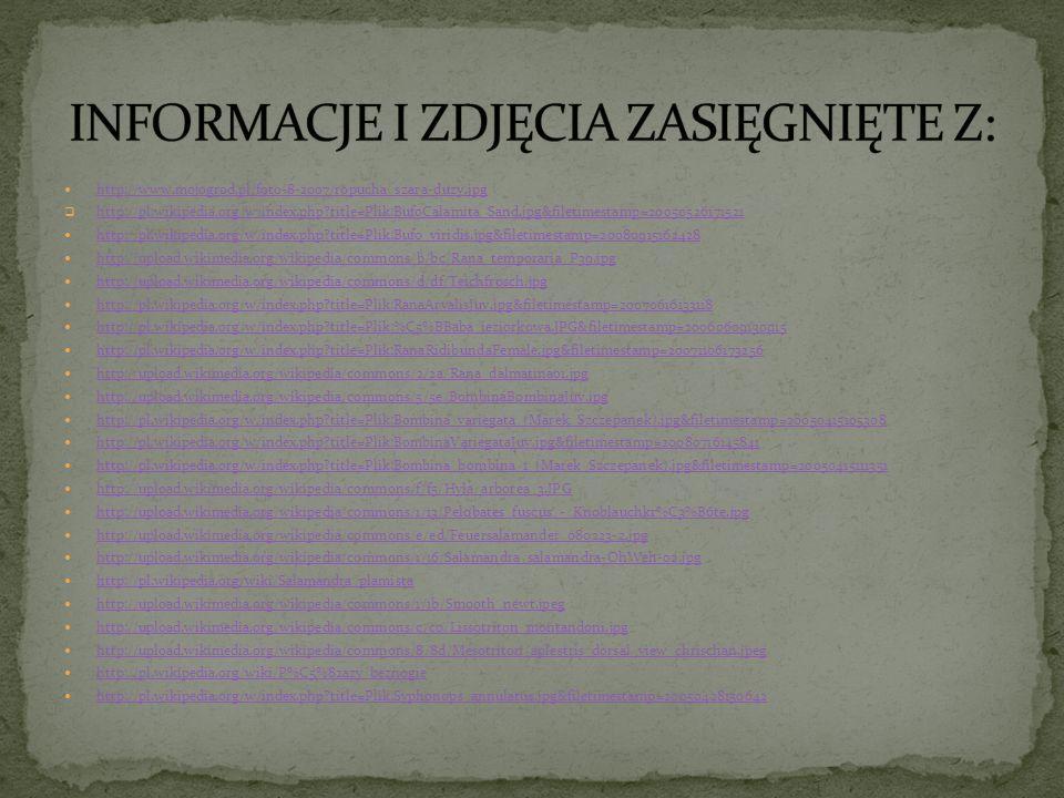 INFORMACJE I ZDJĘCIA ZASIĘGNIĘTE Z: