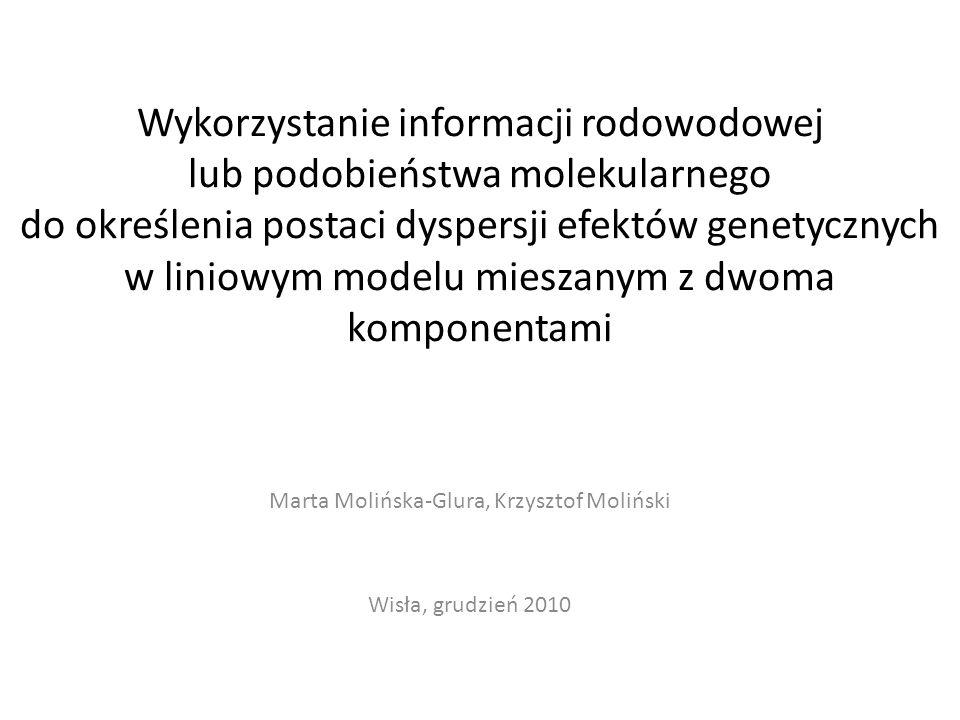 Marta Molińska-Glura, Krzysztof Moliński Wisła, grudzień 2010