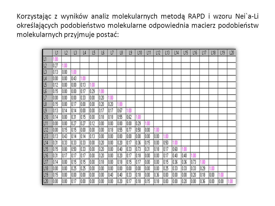 Korzystając z wyników analiz molekularnych metodą RAPD i wzoru Nei`a-Li określających podobieństwo molekularne odpowiednia macierz podobieństw molekularnych przyjmuje postać:
