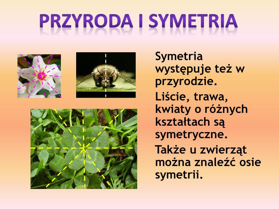 Przyroda i symetria Symetria występuje też w przyrodzie.
