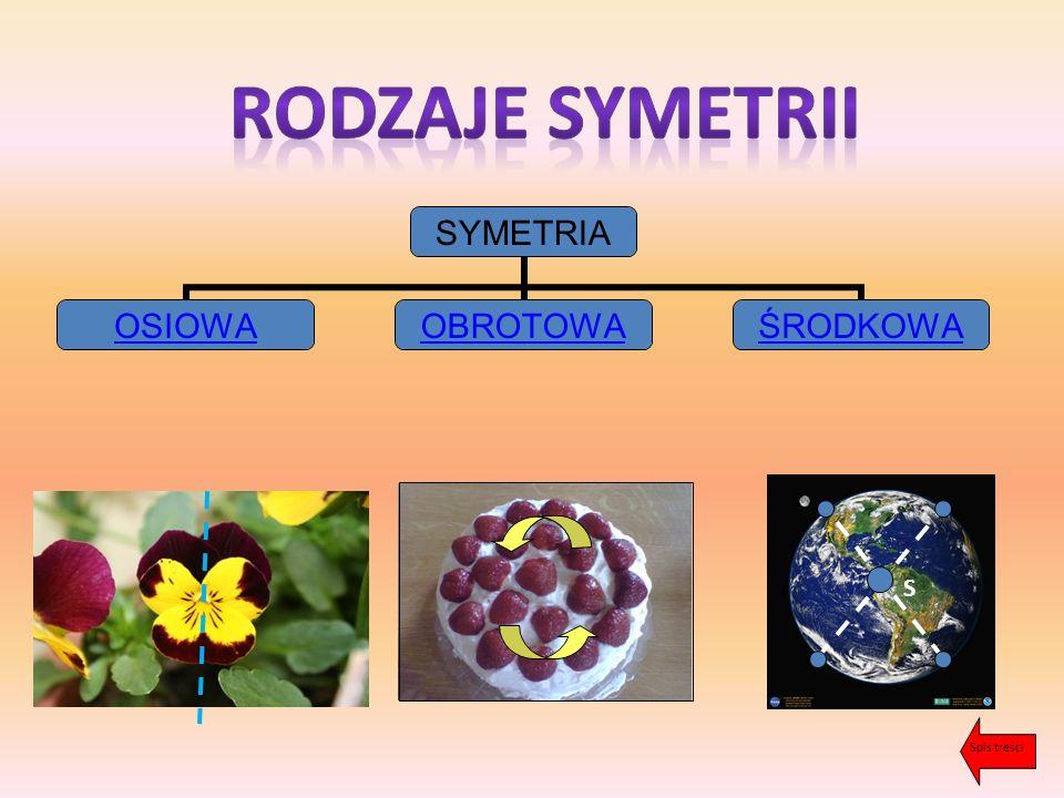 Rodzaje symetrii S Spis treści