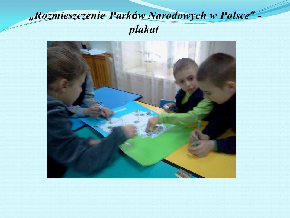 """""""Rozmieszczenie Parków Narodowych w Polsce - plakat"""