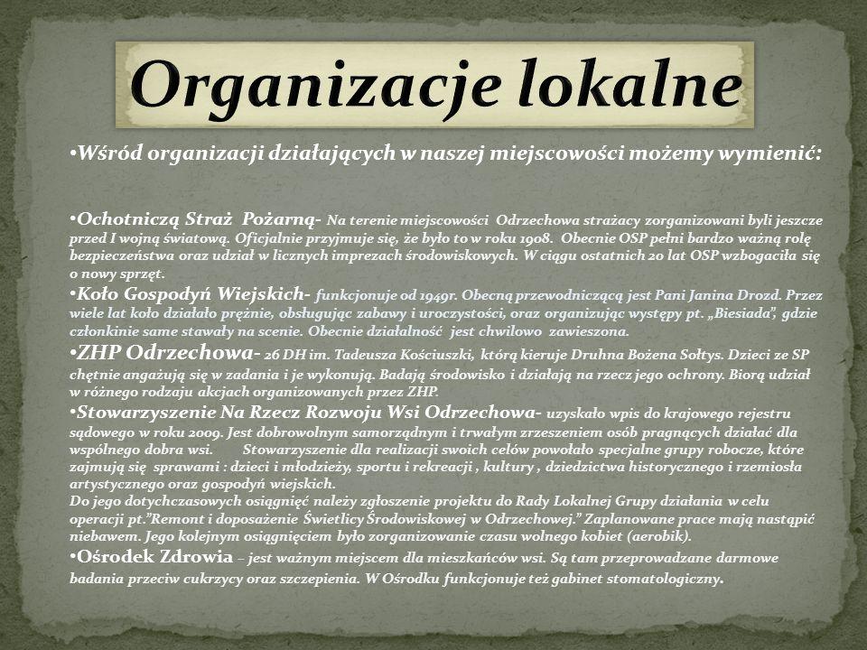Organizacje lokalne Wśród organizacji działających w naszej miejscowości możemy wymienić: