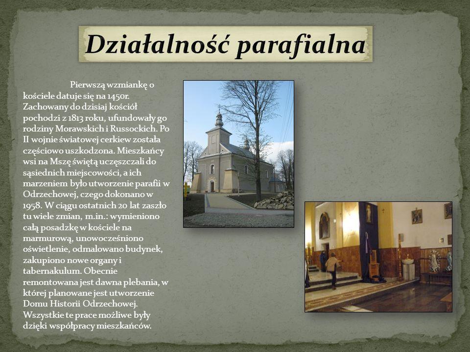 Działalność parafialna