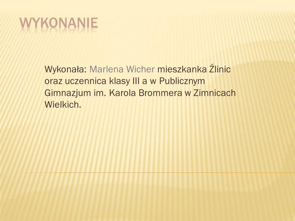 Wykonanie Wykonała: Marlena Wicher mieszkanka Źlinic oraz uczennica klasy III a w Publicznym Gimnazjum im.