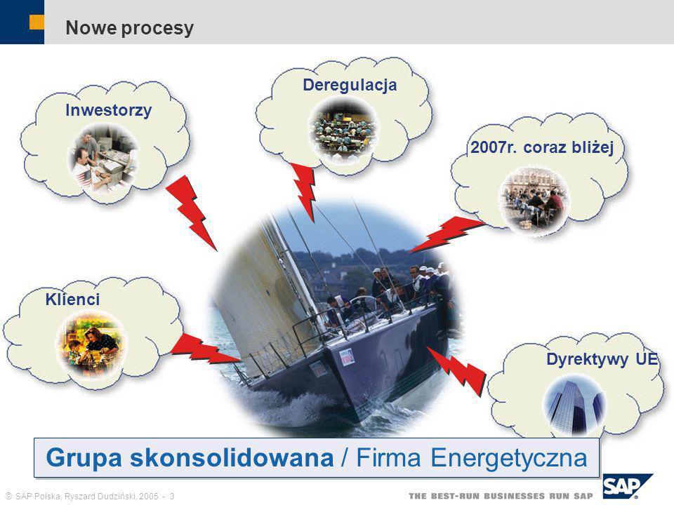 Grupa skonsolidowana / Firma Energetyczna