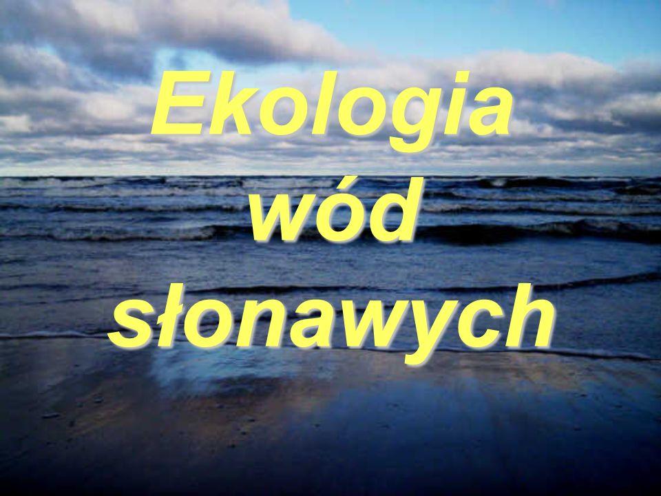 Ekologia wód słonawych