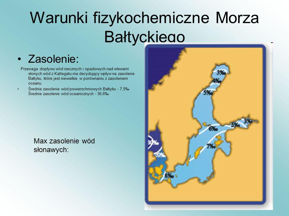 Warunki fizykochemiczne Morza Bałtyckiego