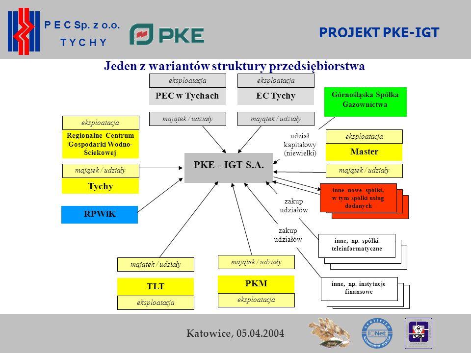 PROJEKT PKE-IGT Jeden z wariantów struktury przedsiębiorstwa