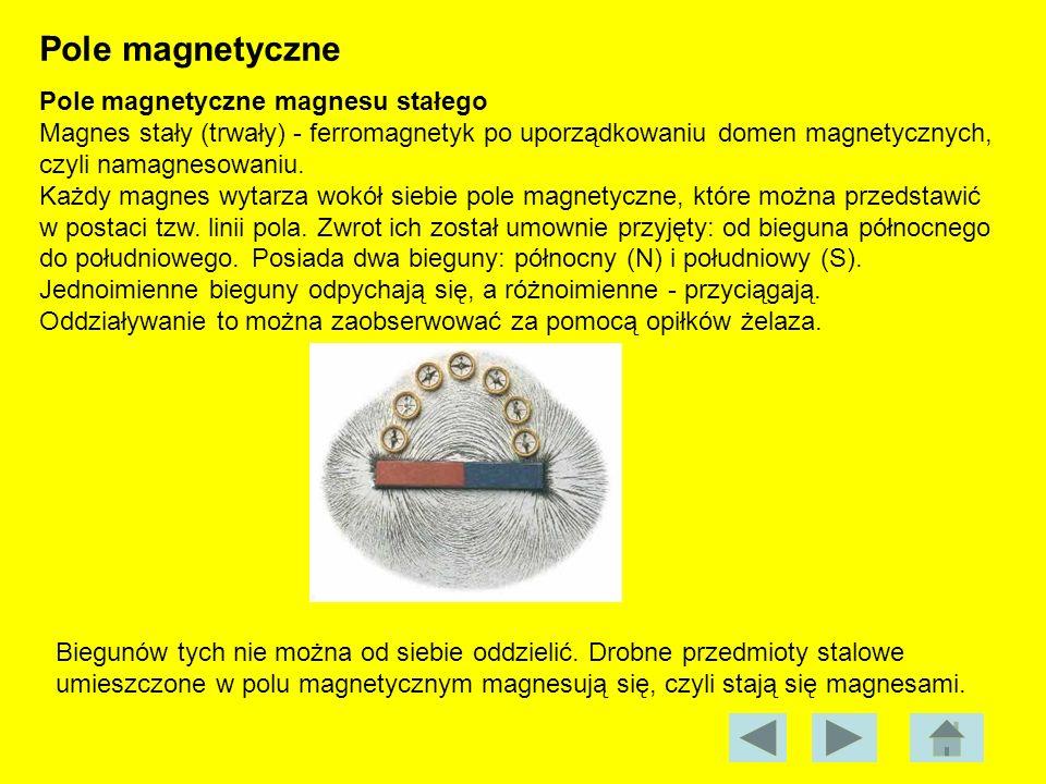 Pole magnetyczne Pole magnetyczne magnesu stałego