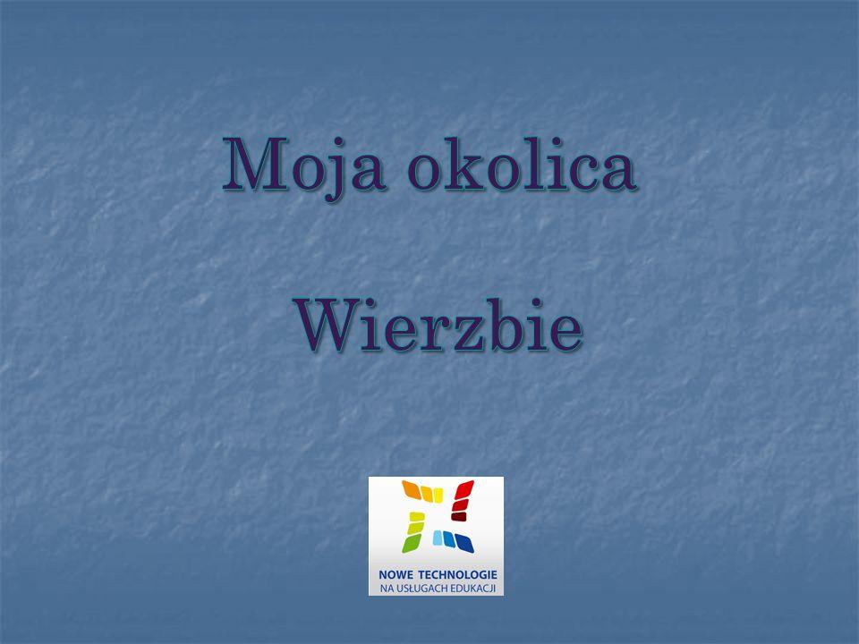 Moja okolica Wierzbie