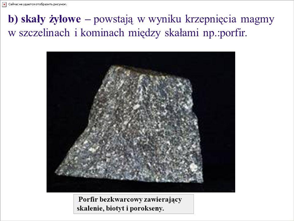 b) skały żyłowe – powstają w wyniku krzepnięcia magmy w szczelinach i kominach między skałami np.:porfir.