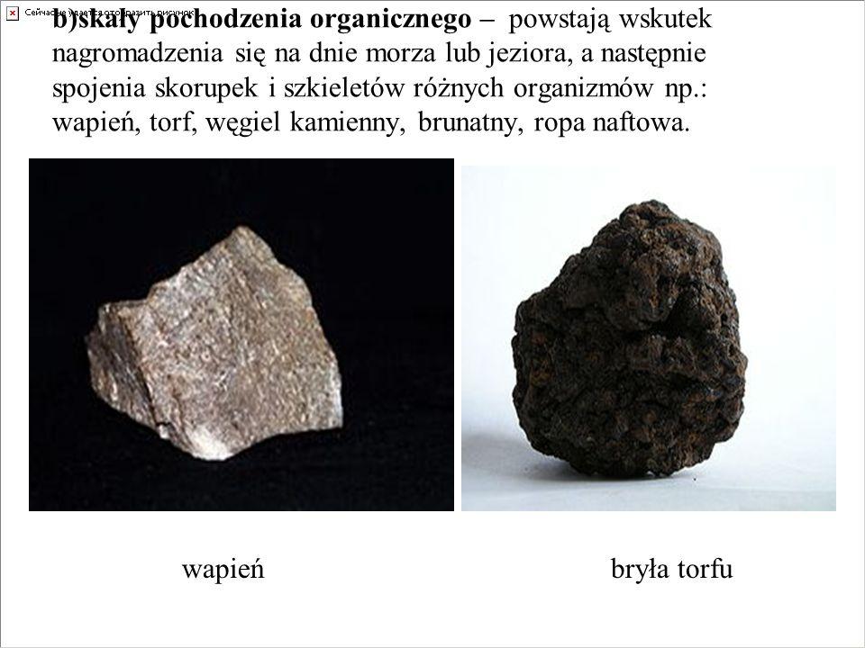 b)skały pochodzenia organicznego – powstają wskutek nagromadzenia się na dnie morza lub jeziora, a następnie spojenia skorupek i szkieletów różnych organizmów np.: wapień, torf, węgiel kamienny, brunatny, ropa naftowa.