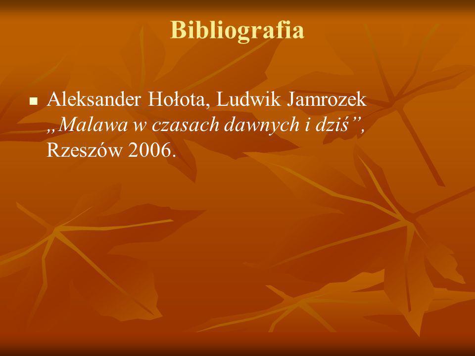 """Bibliografia Aleksander Hołota, Ludwik Jamrozek """"Malawa w czasach dawnych i dziś , Rzeszów 2006."""