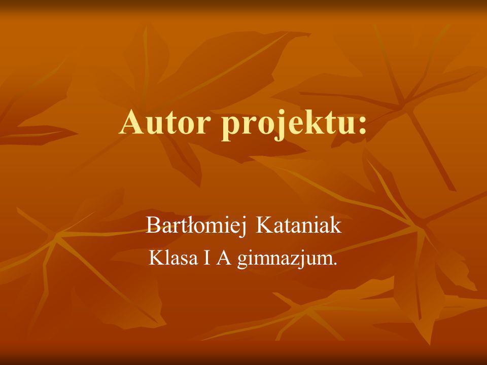 Bartłomiej Kataniak Klasa I A gimnazjum.