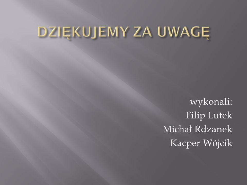 DZIĘKUJEMY ZA UWAGĘ wykonali: Filip Lutek Michał Rdzanek Kacper Wójcik