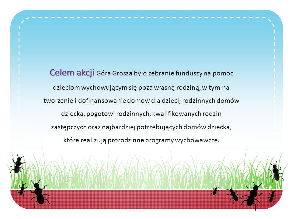 Celem akcji Góra Grosza było zebranie funduszy na pomoc dzieciom wychowującym się poza własną rodziną, w tym na tworzenie i dofinansowanie domów dla dzieci, rodzinnych domów dziecka, pogotowi rodzinnych, kwalifikowanych rodzin zastępczych oraz najbardziej potrzebujących domów dziecka, które realizują prorodzinne programy wychowawcze.