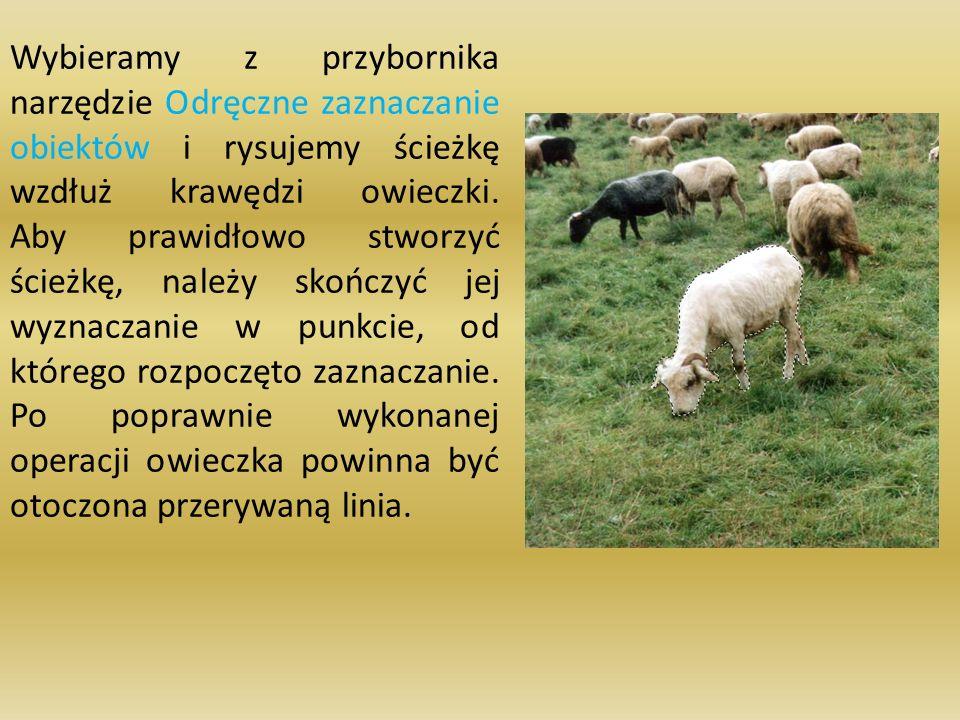 Wybieramy z przybornika narzędzie Odręczne zaznaczanie obiektów i rysujemy ścieżkę wzdłuż krawędzi owieczki.