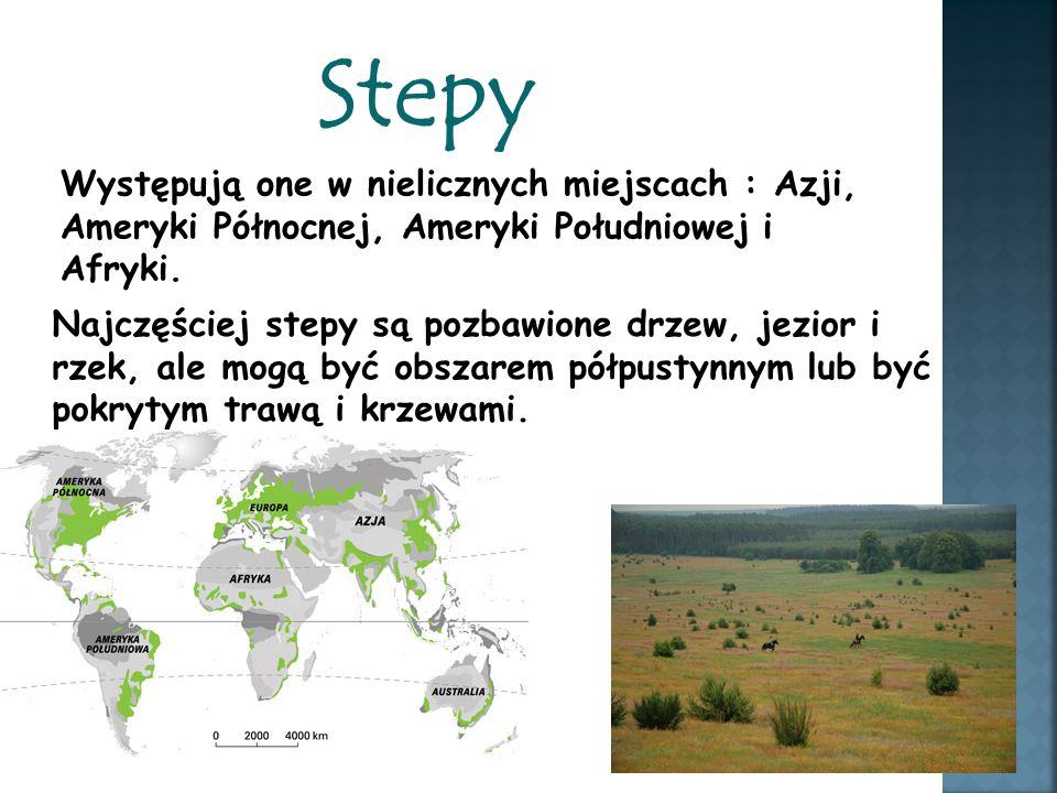 Stepy Występują one w nielicznych miejscach : Azji, Ameryki Północnej, Ameryki Południowej i Afryki.