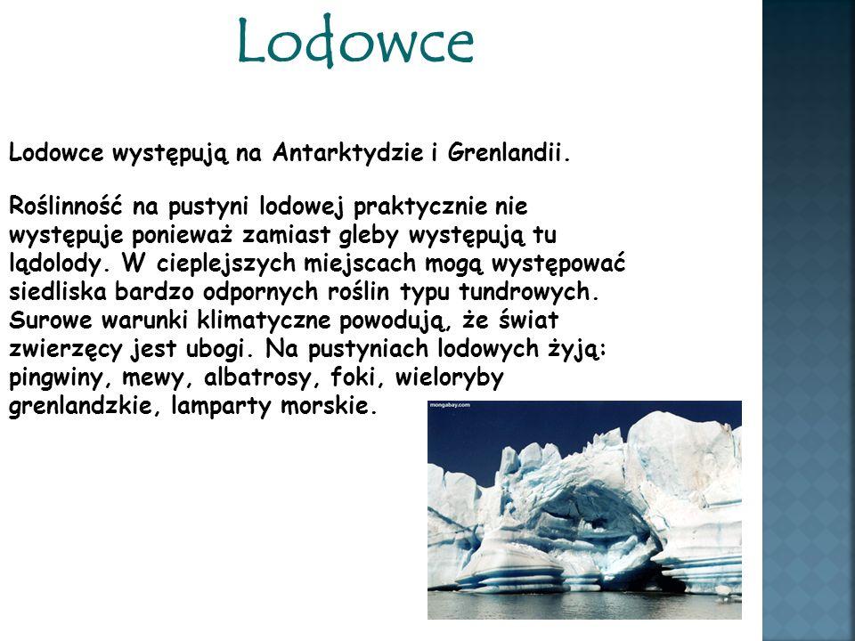 Lodowce Lodowce występują na Antarktydzie i Grenlandii.