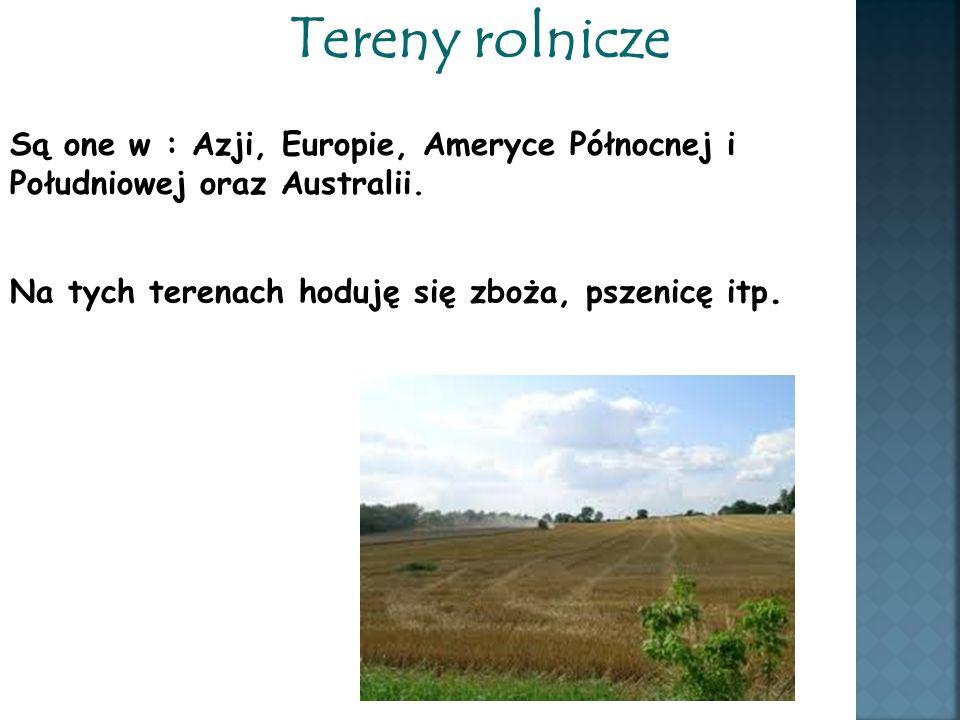 Tereny rolnicze Są one w : Azji, Europie, Ameryce Północnej i Południowej oraz Australii.