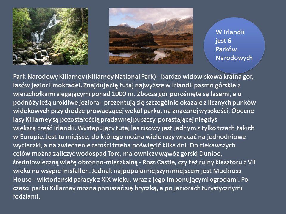 Park Narodowy Killarney (Killarney National Park) - bardzo widowiskowa kraina gór, lasów jezior i mokradeł. Znajduje się tutaj najwyższe w Irlandii pasmo górskie z wierzchołkami sięgającymi ponad 1000 m. Zbocza gór porośnięte są lasami, a u