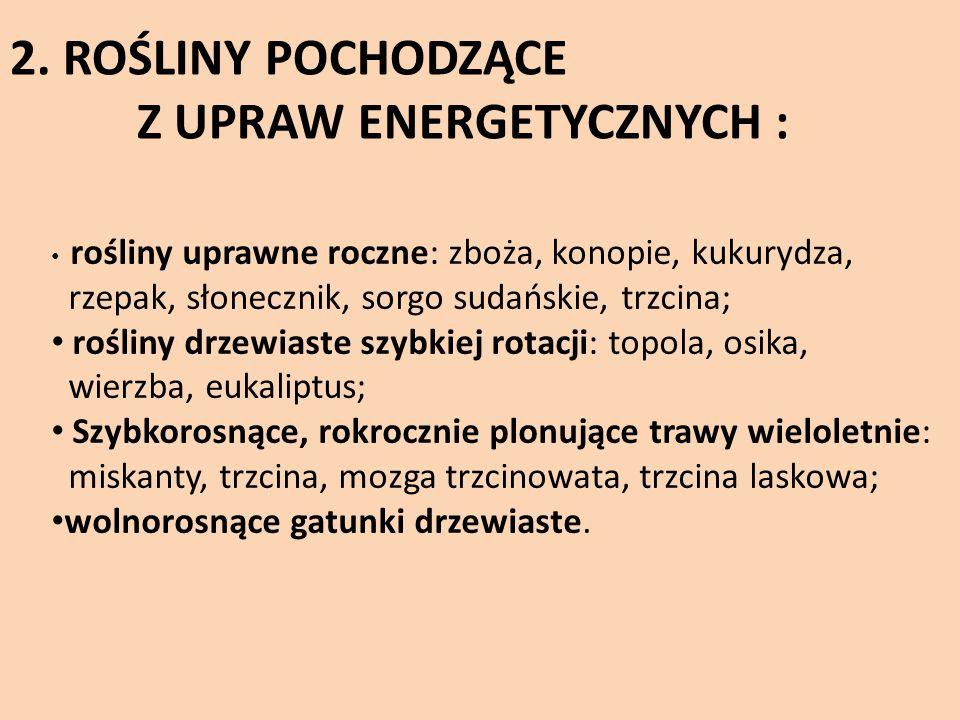 Z UPRAW ENERGETYCZNYCH :