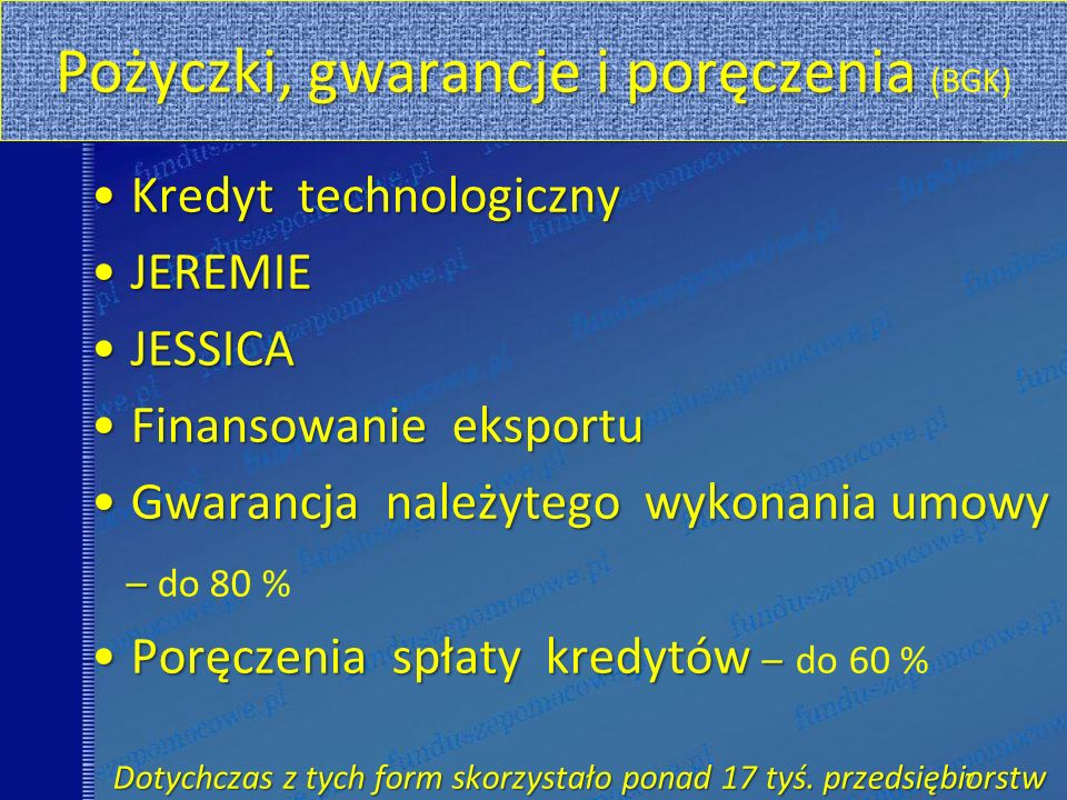 Pożyczki, gwarancje i poręczenia (BGK)