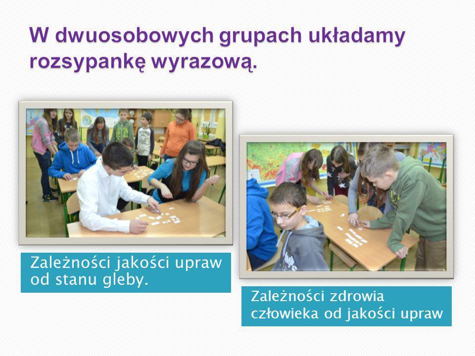 W dwuosobowych grupach układamy rozsypankę wyrazową.
