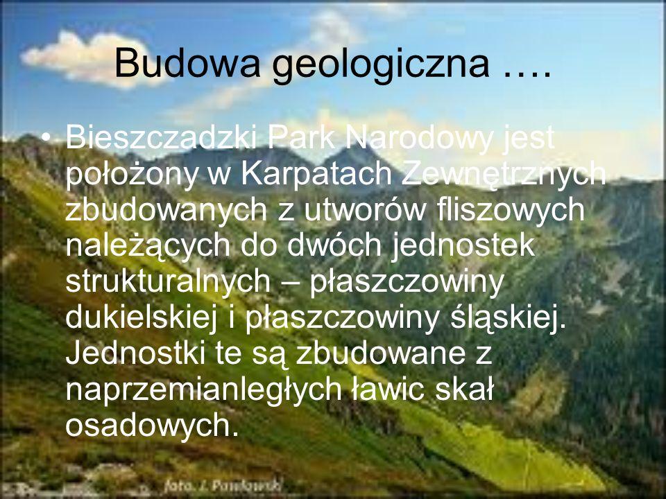 Budowa geologiczna ….