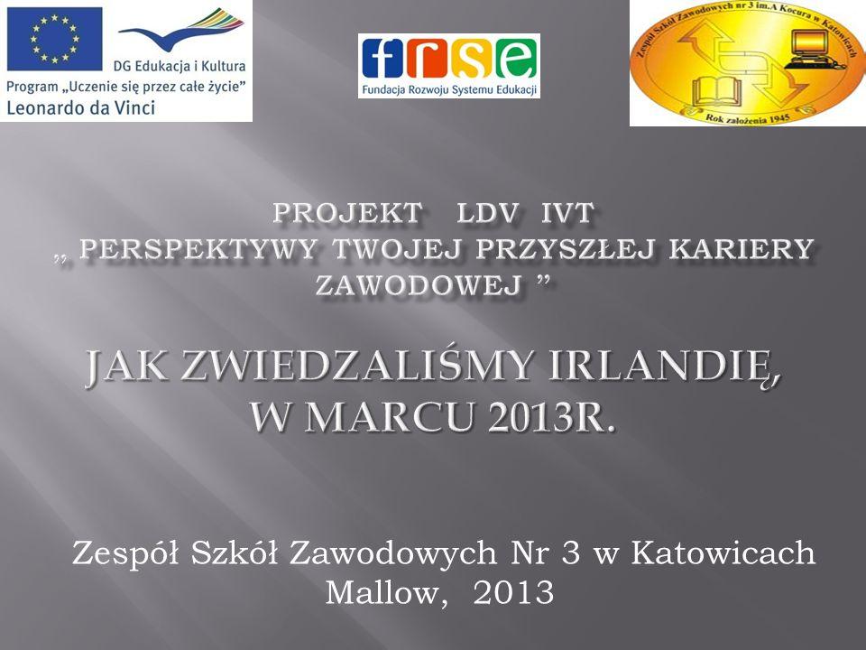 Zespół Szkół Zawodowych Nr 3 w Katowicach Mallow, 2013