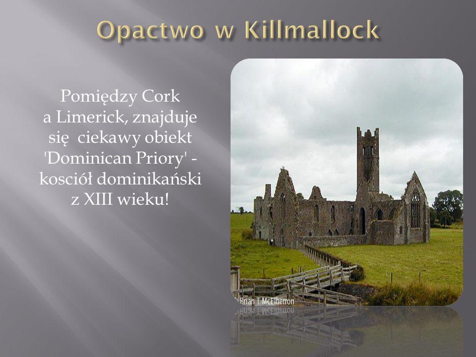 Opactwo w Killmallock Pomiędzy Cork a Limerick, znajduje się ciekawy obiekt Dominican Priory - kosciół dominikański z XIII wieku!