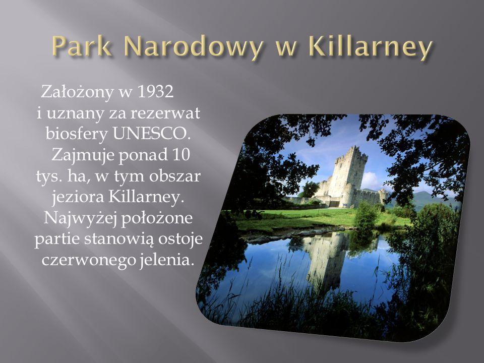 Park Narodowy w Killarney