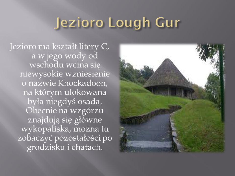 Jezioro Lough Gur