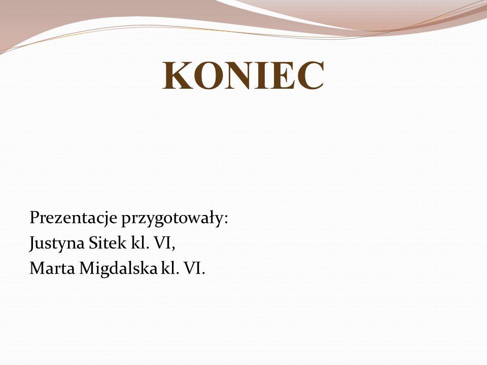 KONIEC Prezentacje przygotowały: Justyna Sitek kl. VI, Marta Migdalska kl. VI.