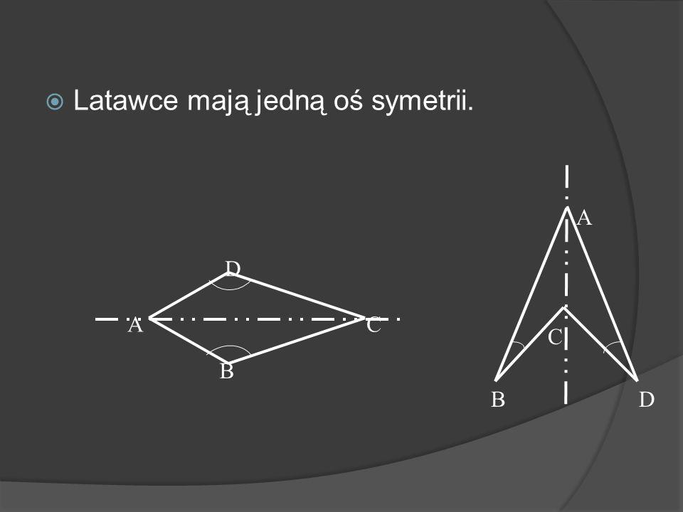Latawce mają jedną oś symetrii.